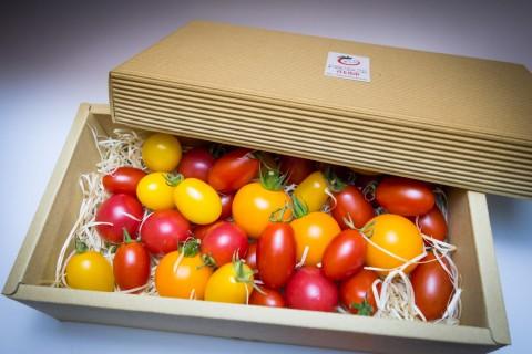ginza_iphone_tomato_001